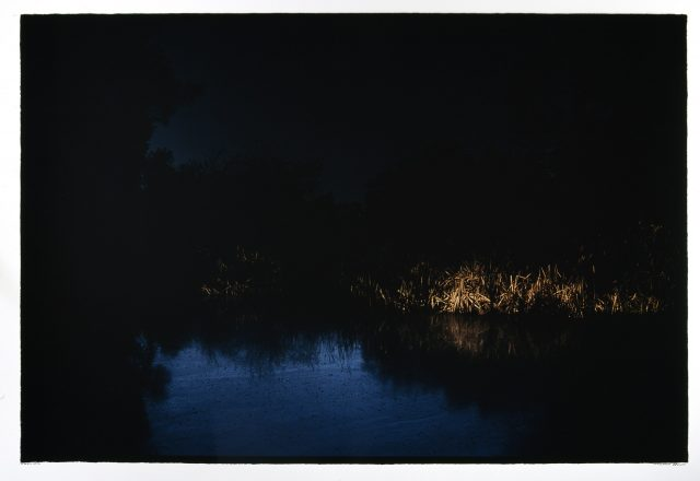 Arnaldo Colasanti, Notte purpurea. La poesia di Giancarlo Pontiggia